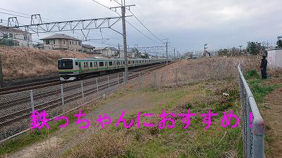 400400DSC_2556.jpg